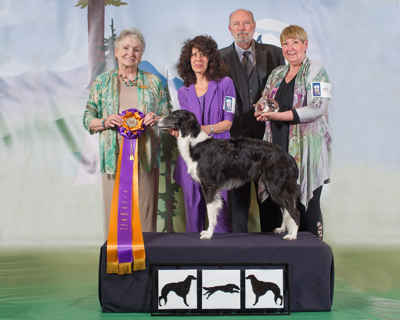 Best in Specialty Show - SilkenFest 2014